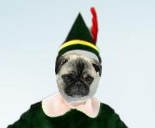 Kimba the Elf