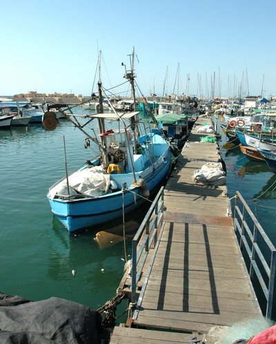 Old Jaffa Port Fishing Boats